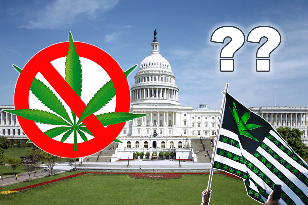 Congress End Cannabis Prohibition 2019